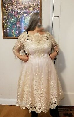 11b85e65824 CHI CHI LONDON Champagne lace dress prom