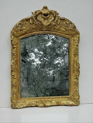 Antique Louis XV Carved Gilt Wood Mirror with Original Mirror Plate