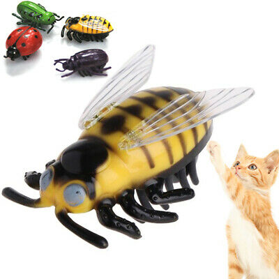 Mini Cat Toys Teaser Interactive Pet Beetle Cicada Auto Electric Walking Insect