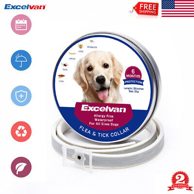 Adjustable Flea and Tick Collar Anti Insect for Pet Dog Cat 6 Months Protection