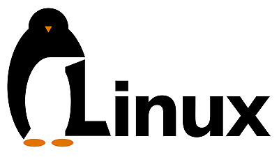 Linux VPS (Virtual Private Server) 10GB SSD 512MB RAM Multiple Locations 1 Year
