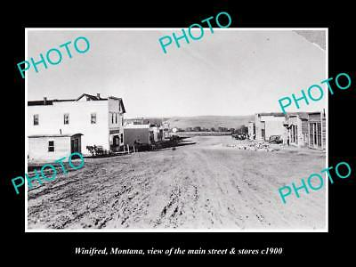 OLD LARGE HISTORIC PHOTO OF WINIFRED MONTANA, THE MAIN STREET & STORES c1900 1