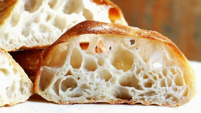 sourdough starter yeast the beast just awesome active sour starter for baking @
