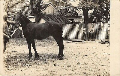 Hooper Nebraska~Man With Horse~House~Mothers Asks Excuse this Card~1911 RPPC