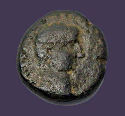 Archaios | Roman Philippi Augustus / Founders Plowing with Oxen | AE | 13.6