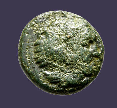 Archaios | King of Macedon Alexander the Great Herakles / Bow Case Club AE18