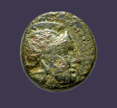 Archaios | Kings of Thrace Lysimachos Athena countermark / Lion | RARE | AE
