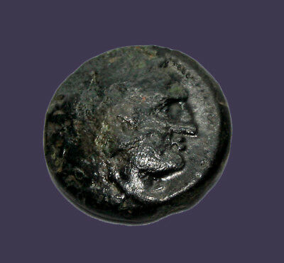 Archaios | King of Macedon Alexander the Great Herakles / Bow Case Club AE17