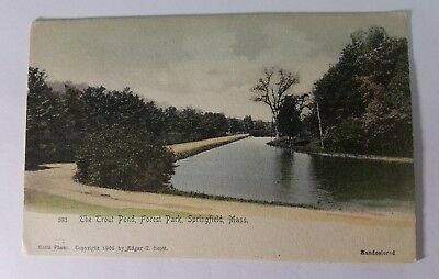 TROUT POND Forest Park Springfield Massachusetts Postcard Unposted Hand Colored