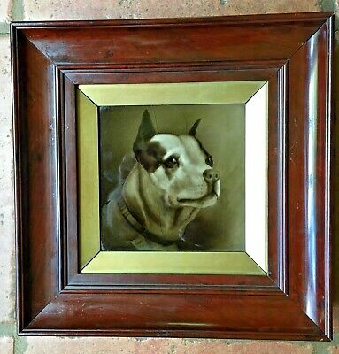 England Bulldog Framed Plaque Sherwin & Cotton