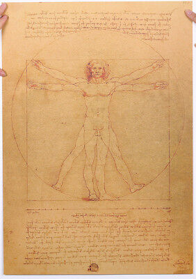 Leonardo Da Vinci Manuscript Vitruvian Perfect Man Poster 51x35.5cm Body Drawing