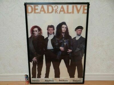 Dead or Alive Poster Vintage English Pop Band Music UK Rare Pete Burns A36