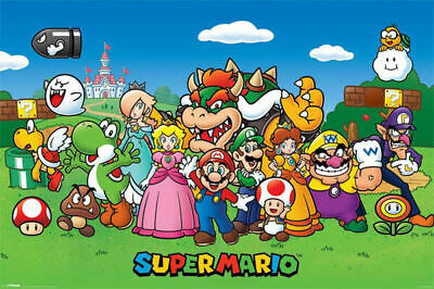 Super Mario Brothers Characters Poster