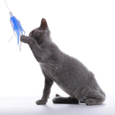 Feather-Pet-Interactive-360°Rotating-Funny-Electric-Teaser-Cat-Paly-Toys-LOT US