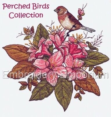Perched Birds Collection - Machine Embroidery Designs On Cd Or Usb