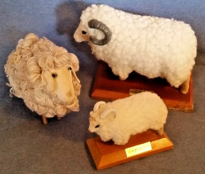 """Set of 3 Sheep from NEW ZEALAND Lg & Sm Rams, Curly Ewe, 3.5"""" to 6.5"""", very nice"""