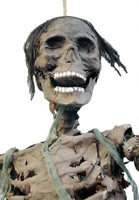 Life Size LIGHTED SKELETON ZOMBIE CORPSE Halloween Prop Decor HAUNTED HOUSE