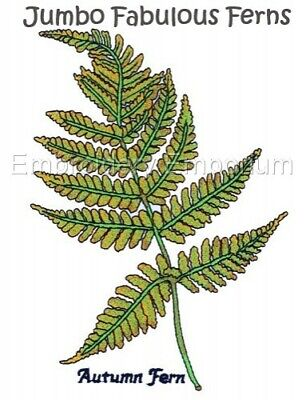 Jumbo Fabulous Ferns Collection - Machine Embroidery Designs On Cd Or Usb