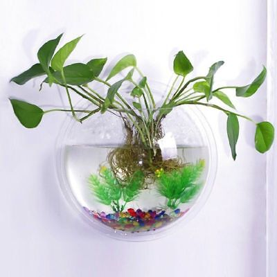 Aquarium Tenture Fish Bowl Flowerpot murale 230ml Fish Tank