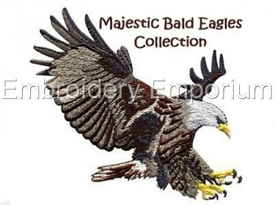 Majestic Bald Eagles Collection - Machine Embroidery Designs On Cd Or Usb