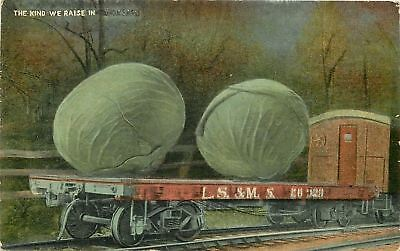 Exaggerated Cabbage~Lake Shore and Michigan Southern Railway Thru Dark Forest pc