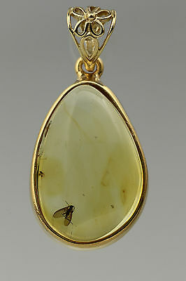 Fossil Insect GNAT Genuine BALTIC AMBER Silver Gold Plated Pendant 5g p1607012-2
