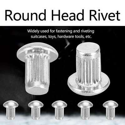 50pcs M5 Stainless Steel Round Head Knurled Shank Solid Rivets Assortment Set
