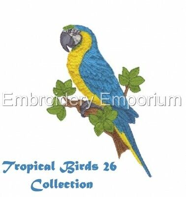 Tropical Birds Collection 26 - Machine Embroidery Designs On Cd Or Usb