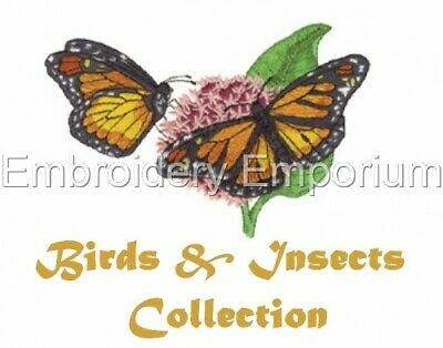 Birds & Insects Collection - Machine Embroidery Designs On Cd Or Usb