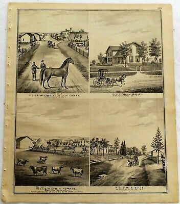 1876 NY Barrington Farms Residences & Businesses Print frm Atlas