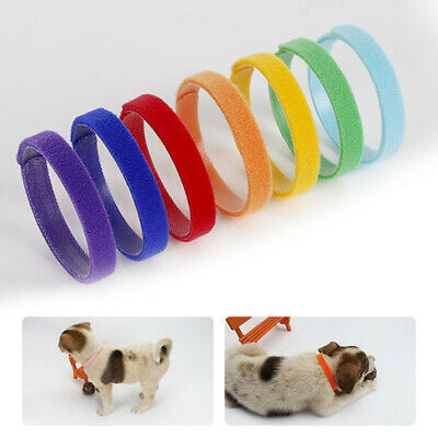 Colour by Random Whelping ID Collar Bands Pet Puppy Kitten Identification Collar
