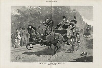 OLD ANTIQUE 1881 LARGE PRINT HORSES AND CARRIAGE STRUGGLE FOR THE MASTERY d16