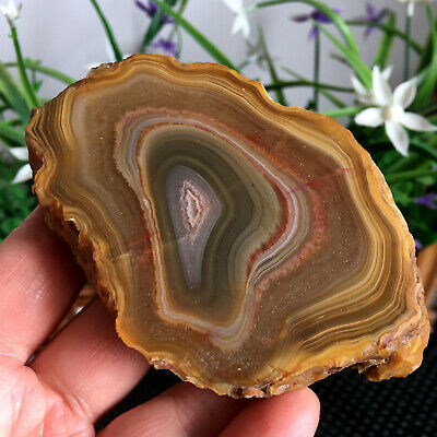154g Brazilian Agate Geode Slab/Slice- Large Natural Druzy quartz crystals my127