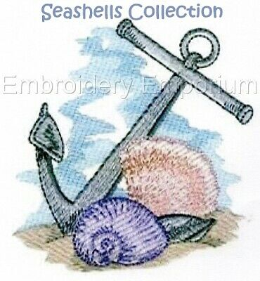 Seashells Collection - Machine Embroidery Designs On Cd Or Usb