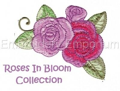 Roses In Bloom Collection - Machine Embroidery Designs On Cd Or Usb