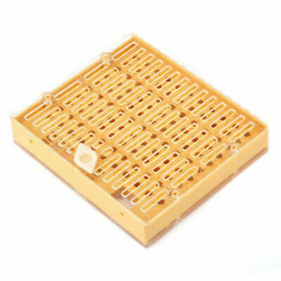 Beekeeping Tools Bee Queen Rearing System Box Kit Cell Bar Holders High Quality