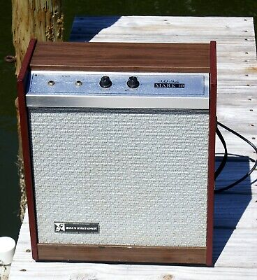 Silvertone Mark 10 Amplifier