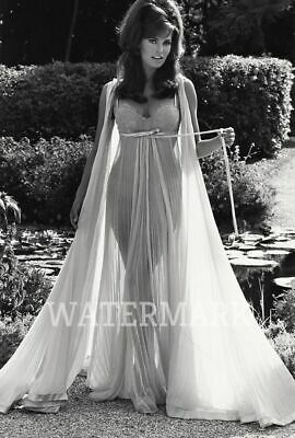Raquel Welch Gorgeous Actress Sexy Sheer Long Dress In Courtyard Publicity Photo