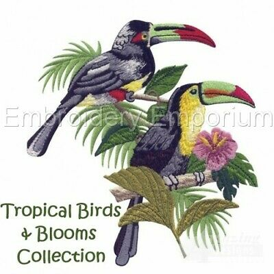 Tropical Birds & Blooms Collection - Machine Embroidery Designs On Cd Or Usb