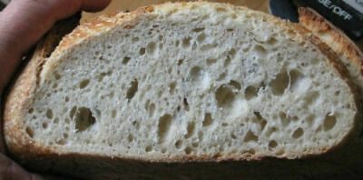 ebay AUTHENTIC SAN FRANCISCO SOURDOUGH STARTER pizza/bread yeast sally  @