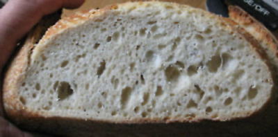 "original san francisco sourdough starter yeast baking  bread and pizza ""sally"" @"