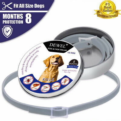 New Dewel orginal Flea Tick Collar for Large Dogs 8 Month