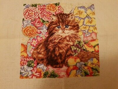 Completed Cat Cross Stitch