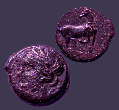 Archaios | Siculo-Punic Carthage Tanit and Horse with Raised Foreleg | AE | 23.5