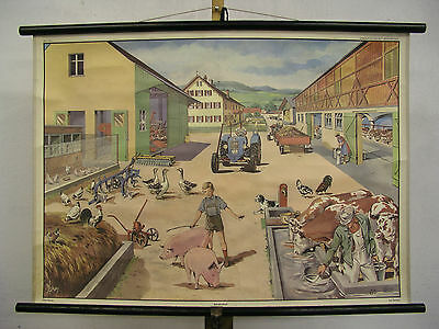 Beautiful Old Schulwandkarte Wall Picture Farm Gift Anniversary 90x64cm Vintage