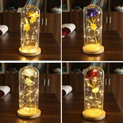 Preserved Forever Rose Flower w/ LED Light in Glass Mothers Day Valentines Gift