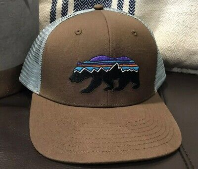 c6009afe630a15 Patagonia Men's Fitz Roy Bear Brown/gray Trucker Hat Mid Crown Snapback