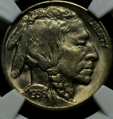 1936-D Buffalo Nickel NGC MS 66 ( Part of complete collection )