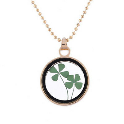 Dried Flower Clover Floating Locket Memory Living Pendant Necklace Jewelry Gifts