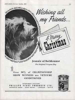 Bearded Collie 1952 Dog Breed Kennel Advert Vetzyme Jennie Of Bothkennar